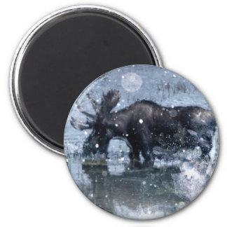 Aimant orignaux de taureau de faune de région sauvage