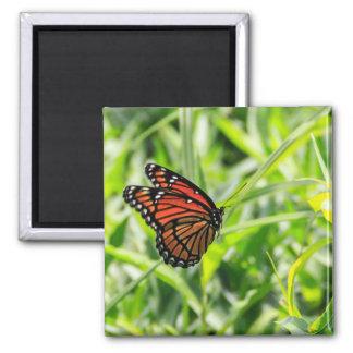 Aimant Papillon de monarque en vol