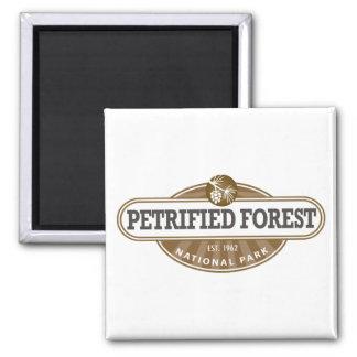 Aimant Parc national de forêt Petrified