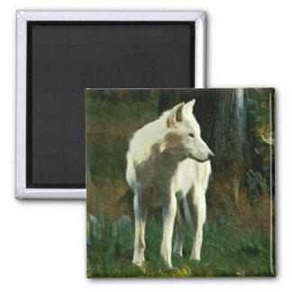 Aimant Peinture de loup blanc