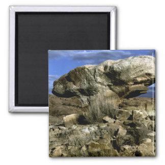 Aimant Photo couleur de roche de champignon
