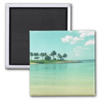 Aimant Plage tranquille et sereine de turquoise en Hawaï