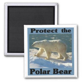 Aimant Protégez l'ours blanc