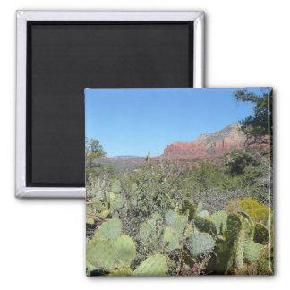 Aimant Roches et cactus rouges I