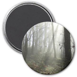 Aimant rond de brume de matin de région boisée