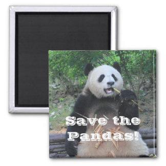 Aimant Sauvez l'aimant de pandas géants