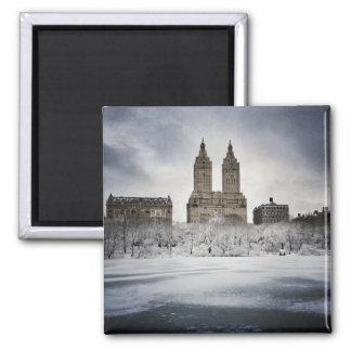 Aimant Sur The Edge de congelé dans le Central Park