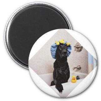 Aimant Temps drôle de Bath de laboratoire de chien noir