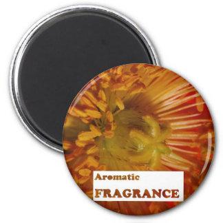 Aimant Texte : Parfums AROMATIQUES : Annoncez la