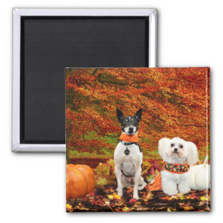 Aimant Thanksgiving de chute - Fox Terrier de Monty et