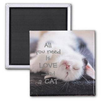 Aimant Tout que vous avez besoin est amour… et un chaton