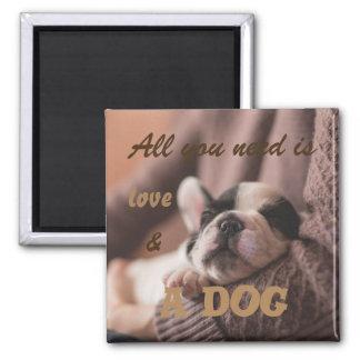 Aimant Tout que vous avez besoin est amour et un chien