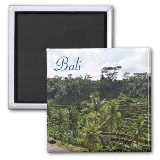 Aimant Ubud Bali