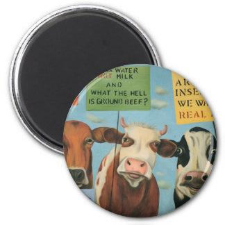 Aimant Vaches en grève