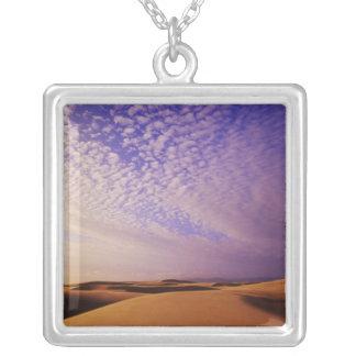 Aire de loisirs nationale de dunes de l'Orégon, Collier