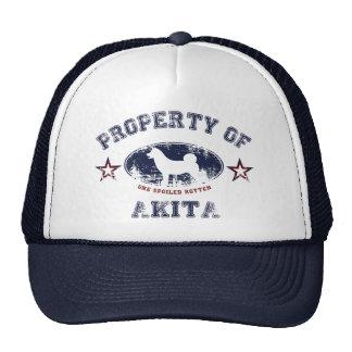 Akita Casquettes