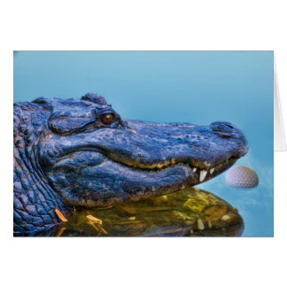 Alligator avec la carte de balle de golf