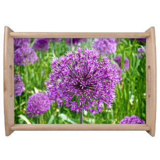Allium pourpre, plateau servant