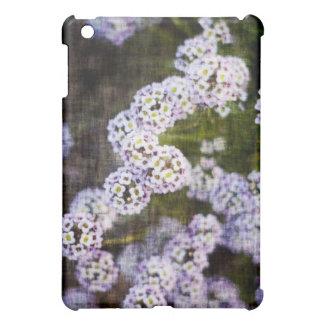 Alyssum doux dans la grunge coque pour iPad mini