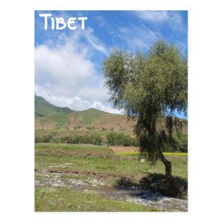Amdo Thibet Carte Postale