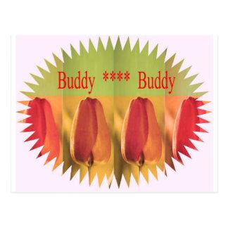 Ami d'ami : Bourgeon floraux Carte Postale