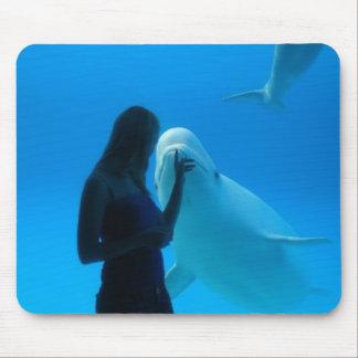 Ami de beluga tapis de souris
