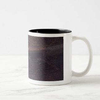 Amis de raton laveur tasse 2 couleurs
