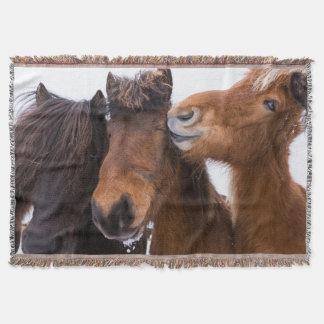 Amis islandais de cheval, Islande Couvertures
