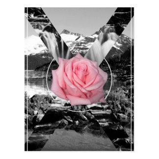 Amour de nature de rose de montagne rocheuse de carte postale