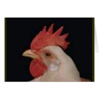 Amour de poulet carte