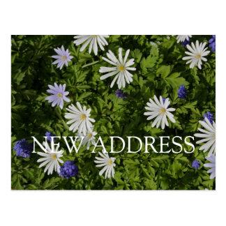 Ampoules de ressort en fleur à la nouvelle adresse carte postale