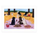 Amusement d'automne de Labradors Cartes Postales