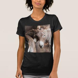 âne dans la ferme t-shirt