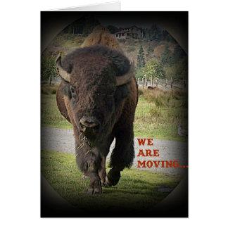 Animal de Buffalo de bison nous déplaçons la carte