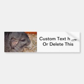 animal gris de vue de tête latérale de chinchilla autocollant de voiture