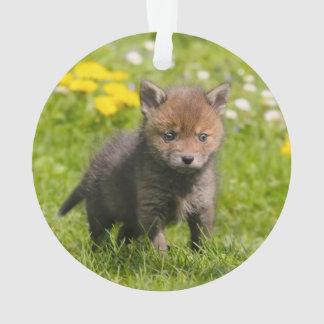 Animal sauvage rouge pelucheux mignon de bébé de