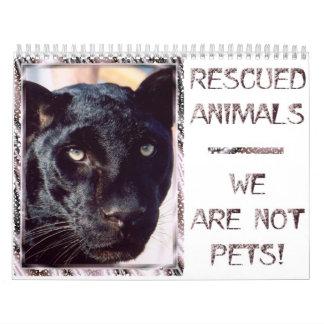 Animaux secourus - nous ne sommes pas des animaux calendrier mural