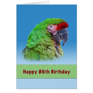 Anniversaire, quatre-vingt-sixième, perroquet vert carte de vœux