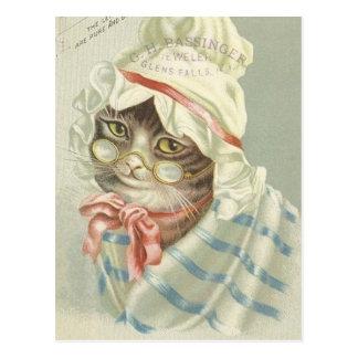 Annonce optique vintage avec le chat carte postale
