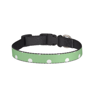 Apple vert choient le collier collier de chien