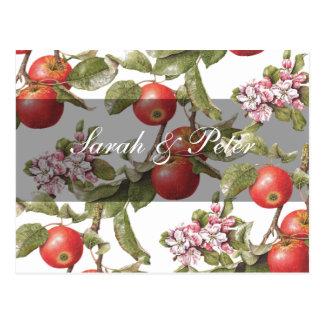 Apple vintage fleurissent Économie-le-Date Cartes Postales