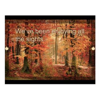 Apprécier la carte postale d'automne