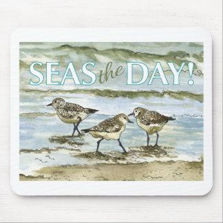 Aquarelle de plage d'oiseaux de bécasseau tapis de souris