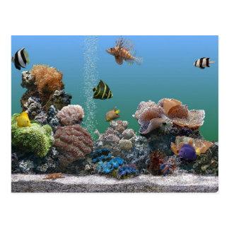 aquarium rsvp briefkaart