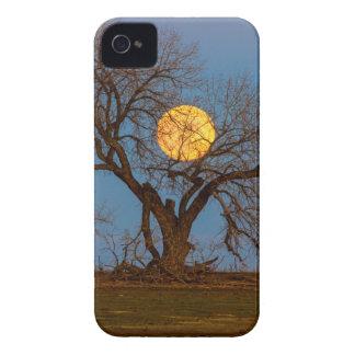 Arbre de novembre Supermoon Coques Case-Mate iPhone 4
