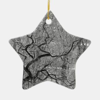 arbre noir et blanc ornement étoile en céramique