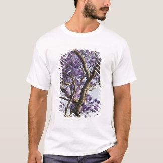 Arbres de floraison de Jacaranda en nouveau parc T-shirt