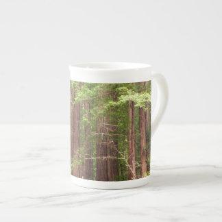Arbres de séquoia au monument national en bois de mug