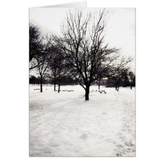 Arbres d'hiver carte