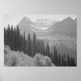 Arbres et affiche noirs et blancs de montagnes